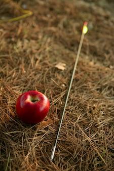 William dit métaphore avec pomme rouge et flèche
