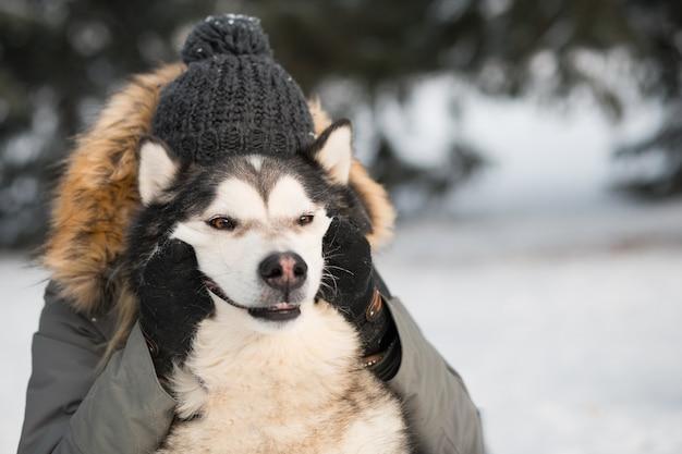 Woman hugging with smiling malamute d'alaska dans la forêt d'hiver. gros plan portrait.