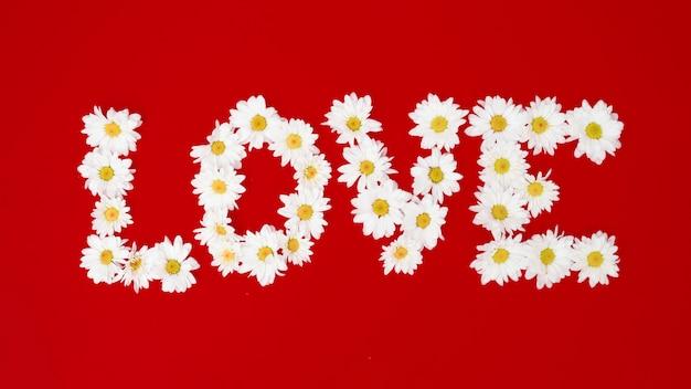 Word love fait avec des marguerites blanches