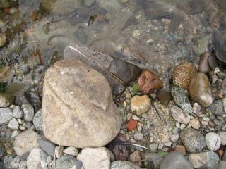Xxx, pierres