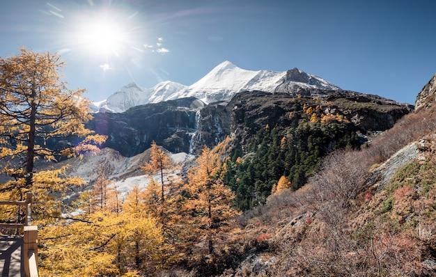 Yangmaiyong montagne sacrée avec forêt de pins en automne