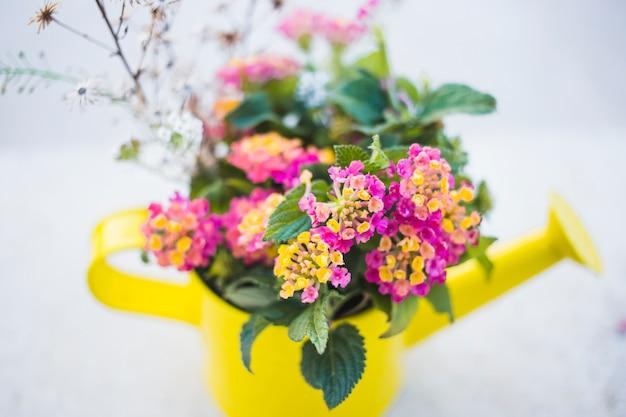 Yellow arrosoir avec des fleurs décoratives