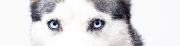 Ces yeux bleus devant ...