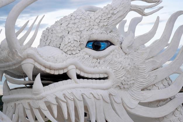 Yeux bleus en gros plan de dragon blanc