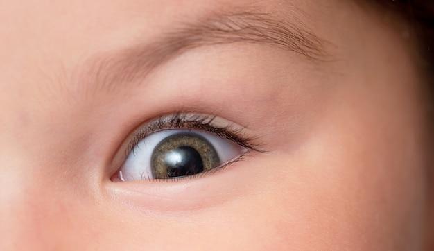 Les yeux marrons du bébé sont en gros plan. l'enfant regarde la caméra