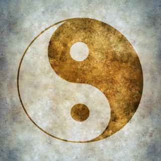 Yin yang chinois