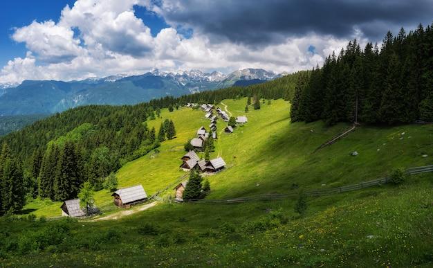 Zajamniki pâturages dans les alpes juliennes