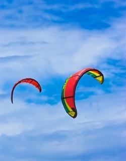 Zenn de cerf-volant