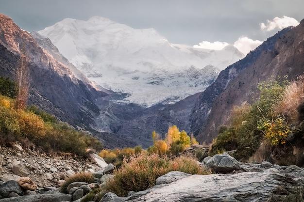 Zone de nature sauvage avec la montagne rakaposhi enneigée.