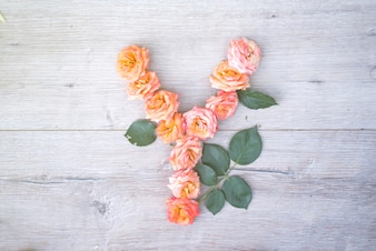 A, alphabet fleur de roses isolé sur fond en bois gris, plat poser