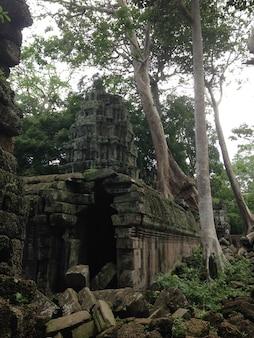 Anckor palaces, Siem Reap, Camboda. Beau paradis.