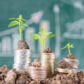 Arbre de croissance dans le sol et pièces de monnaie avec fond de tableau noir. Concept d'affaires et de finance
