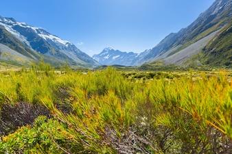 Baeutiful vue d'Aoraki Mount Cook île du sud Nouvelle-Zélande