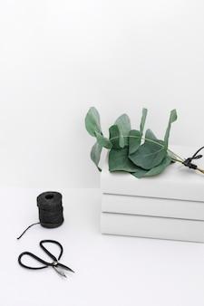 Brindille sur un livre empilé avec une bobine noire et des ciseaux sur fond blanc