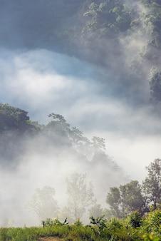 Brume incroyable se déplaçant sur les montagnes de la nature pendant le lever du soleil dans les montagnes en Thaïlande