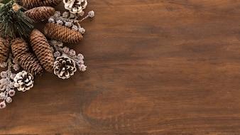 Chicots et branches décoratifs