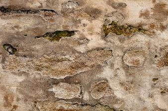 Détail d'un mur de briques brunes