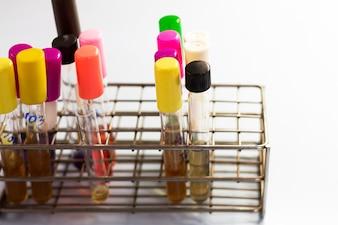 Expériences de laboratoire en laboratoire