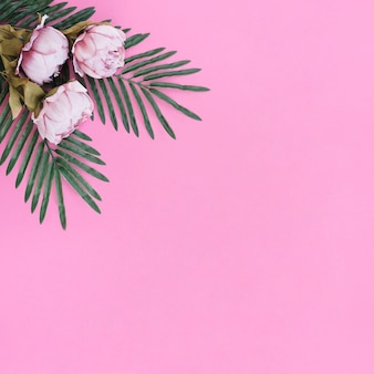 Fleurs avec des feuilles de palmiers sur fond de cadre rose