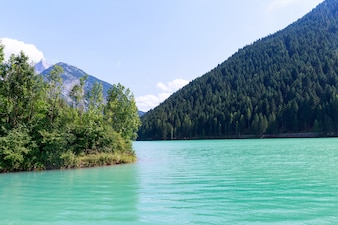 Lac vert et forêt à Auronzo di Cadore