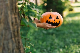 Mains, tenue, halloween, citrouille, dans parc