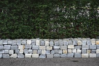 Mur de blocs de béton