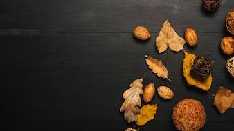 Noyaux et feuilles près de boules décoratives