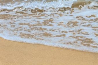 Plage de sable et vague