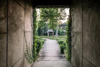 Porte ouverte avec la nature environnante et la lumière du soleil
