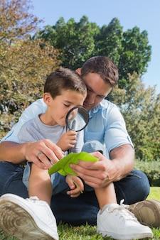 Souriant papa et fils inspectant les feuilles avec une loupe
