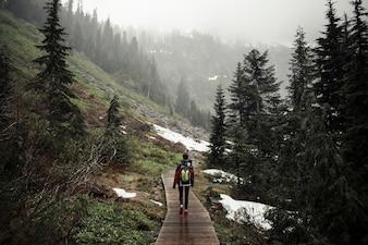 Vue arrière de la femme qui marche sur la promenade au-dessus de la montagne