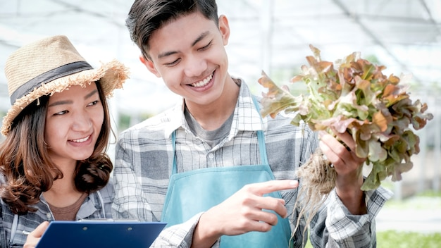 2 l'agricoltore ispeziona la qualità dell'insalata e della lattuga biologica di verdure provenienti da una fattoria idroponica e prende appunti sugli appunti per offrire ai clienti il miglior prodotto.