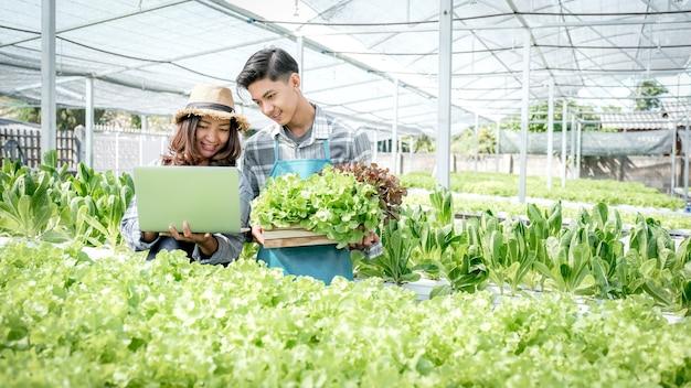 2 l'agricoltore ispeziona la qualità dell'insalata e della lattuga di verdure biologiche da una fattoria idroponica e registra nel laptop per offrire ai clienti il miglior prodotto.