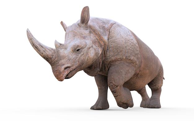 Rinoceronte bianco grande dell'illustrazione 3d isolato su fondo bianco con il percorso di ritaglio.
