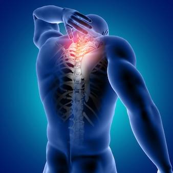 Figura medica maschio 3d con la cima della spina dorsale evidenziata