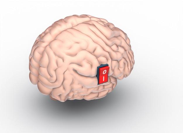 Il modello 3d rende di un cervello umano con l'interruttore