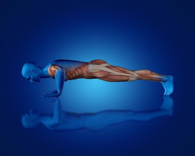 Rendering 3d di una figura medica blu con mappa muscolare parziale in posizione push up