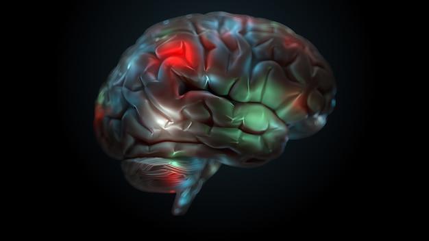 Rendering 3d del cervello con zone luminose e illuminate. la superficie del cervello è evidenziata con colori diversi.