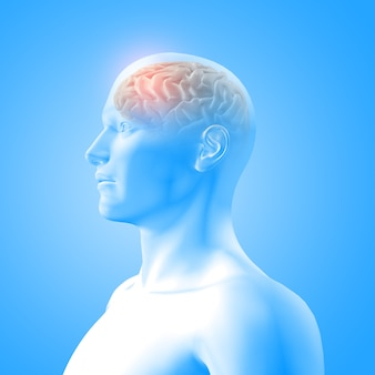 Rendering 3d di un'immagine medica che mostra il cervello nella figura maschile con il lobo frontale evidenziato
