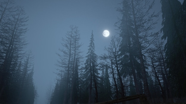 Rendering 3d della foresta mistica di notte nella nebbia con la luna nel cielo