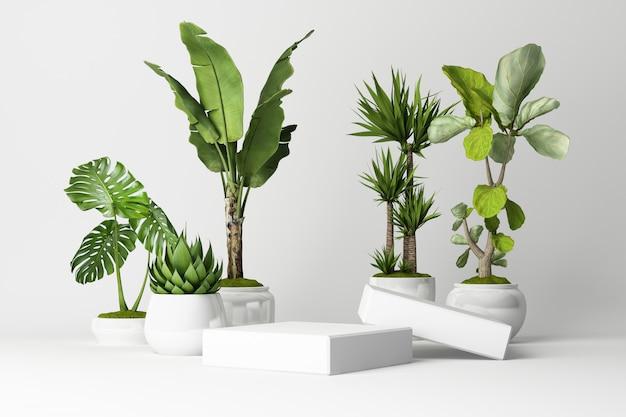 3d rendono delle piante tropicali isolate su bianco