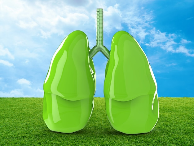 3d rendering polmoni verdi con campo verde e cielo blu
