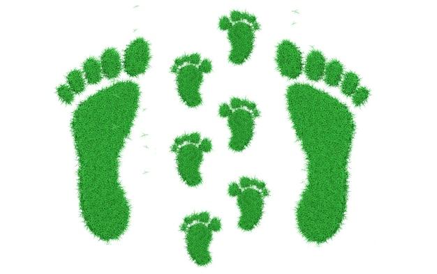 Rendering 3d una traccia dei piedi nudi di un adulto e un bambino ricoperto di erba