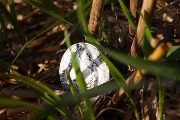 Una moneta d'argento da 50 centesimi
