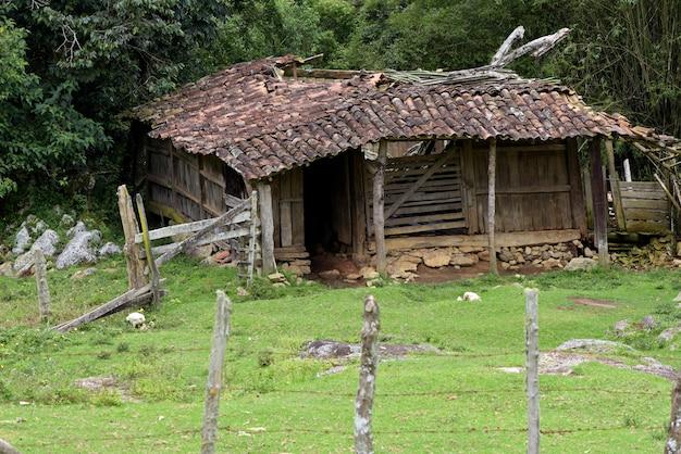 Fattoria abbandonata tra gli alberi e il pascolo. campagna del brasile