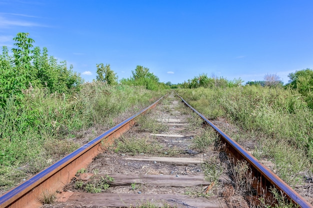 Una vecchia ferrovia abbandonata le rotaie erano arrugginite e ricoperte di erba