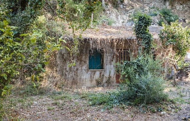 Vecchia casa invasa abbandonata in piedi da sola in montagna