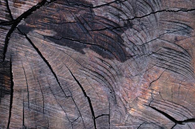 Lo sfondo astratto della vecchia superficie in legno è bagnato dopo la pioggia. topview del primo piano