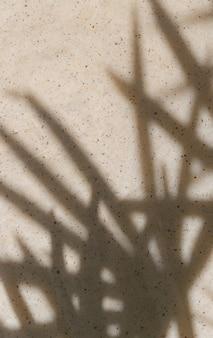 Priorità bassa astratta con le ombre di foglia di palma su beige