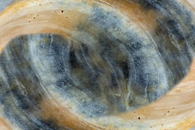 Fondo scuro confuso astratto di lerciume, con spazio per copiare, vecchio fondo sporco, struttura della conchiglia,